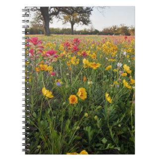Roadside wildflowers in Texas, spring Spiral Note Book