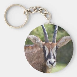 Roan Antelope Keyring