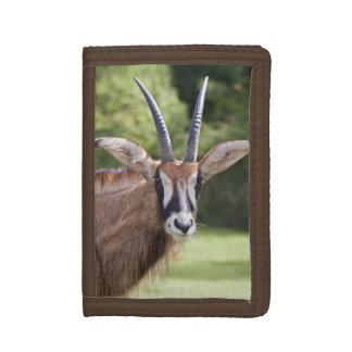 Roan Antelope Wallet