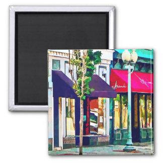 Roanoke VA Street With Restaurant Fridge Magnet