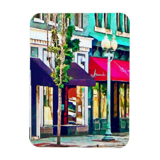 Roanoke VA Street With Restaurant Magnet