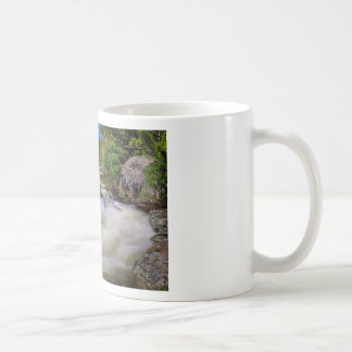 Roaring Colorado Ouzel Creek Coffee Mug