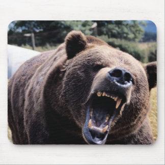 Roaring Teddy Bear Mouse Pad
