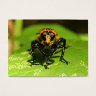 Robber Fly Business Card