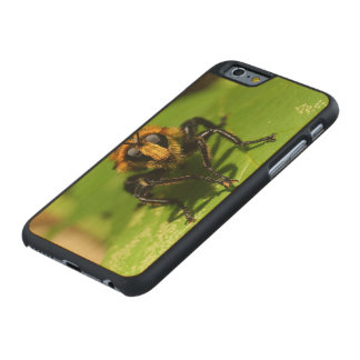 Robber Fly Carved Maple iPhone 6 Case