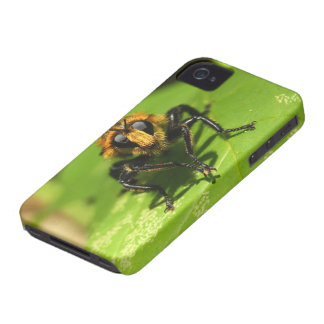 Robber Fly Case-Mate iPhone 4 Cases