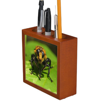 Robber Fly Desk Organiser