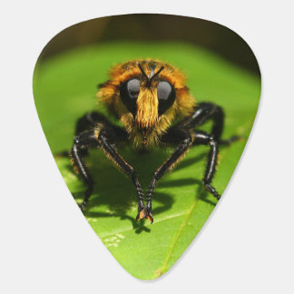Robber Fly Guitar Pick