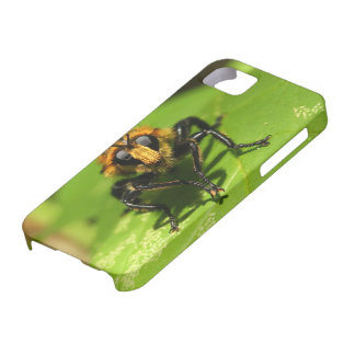 Robber Fly iPhone 5 Covers
