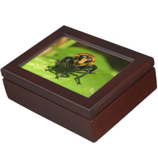 Robber Fly Keepsake Box