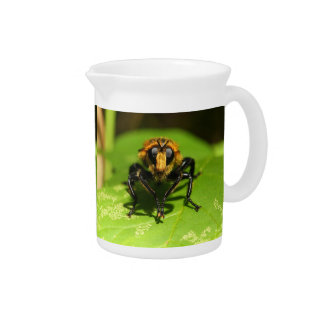 Robber Fly Pitcher