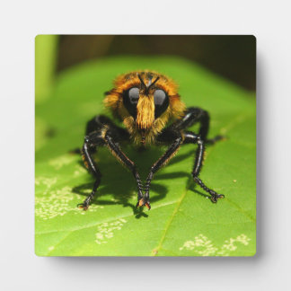 Robber Fly Plaque