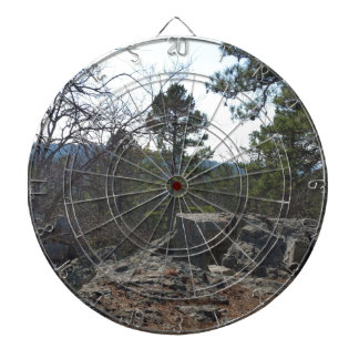 Robers Cave State Park Dartboard With Darts