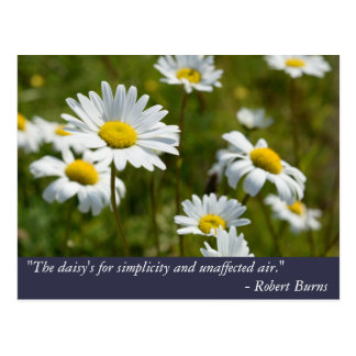 Robert Burns Daisy Quote Postcard