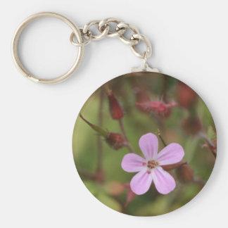 robertskruid key ring