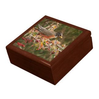 Robin Bird Gift Box