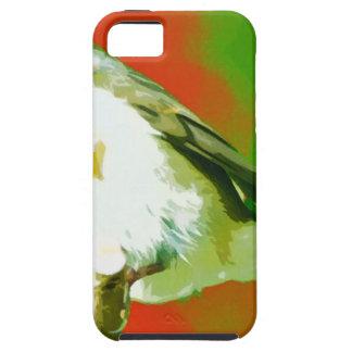 Robin Bird iPhone 5 Cases