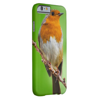 Robin Bird iPhone 6/6s case