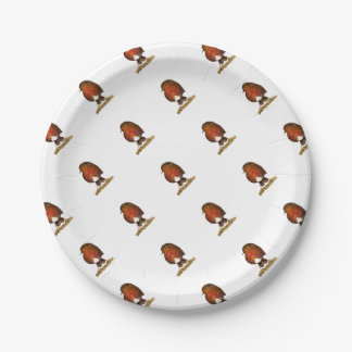 Robin Bird Watercolor Painting Artwork Paper Plate