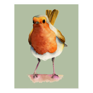 Robin Bird Watercolor Painting Postcard