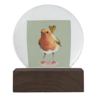 Robin Bird Watercolor Painting Snow Globe