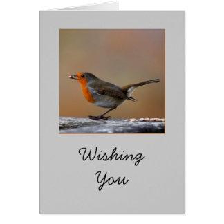 Robin Card