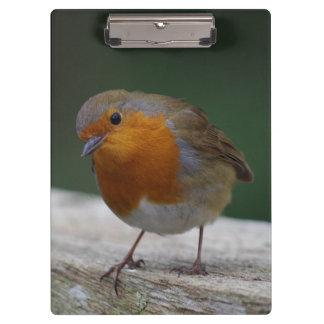 Robin Clipboard