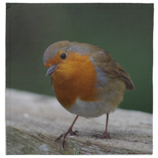 Robin Cloth Napkins
