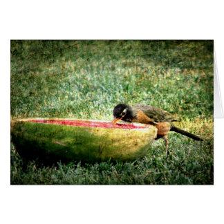 Robin Eats Watermelon Card