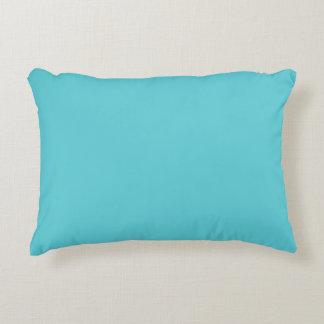 """Robin Egg Blue"" Accent Cushion"