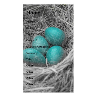 Robin Eggs Grunge Pack Of Standard Business Cards