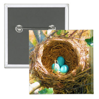 Robin Eggs in a Backyard Tree Nest Buttons