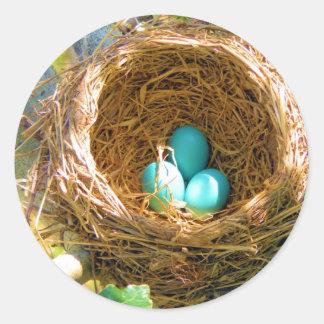Robin Eggs in a Backyard Tree Nest Round Sticker