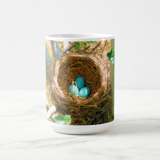 Robin eggs unhatched in a backyard tree nest coffee mug
