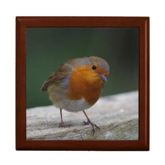 Robin Gift Box