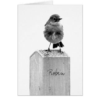 Robin Greeting Card black white