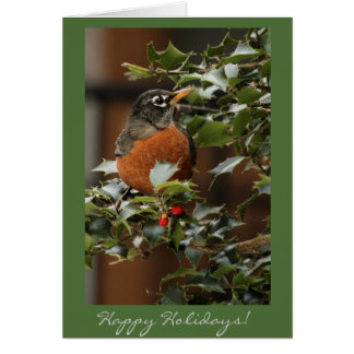 Robin Holiday Card