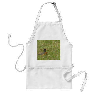 Robin in the Grass Apron