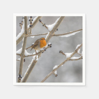 Robin in the snow disposable napkins