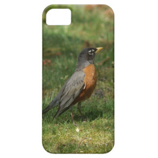 Robin iPhone 5 Barely There Case. Barely There iPhone 5 Case