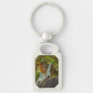 Robin Key Ring