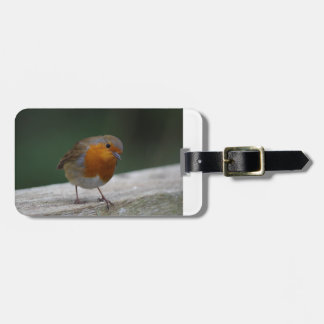 Robin Luggage Tag