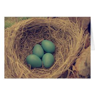 Robin Nest and Eggs Card