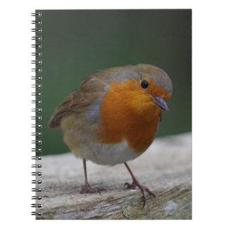 Robin Notebook