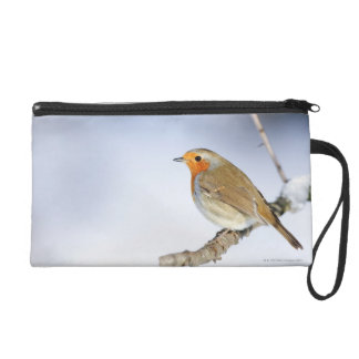 Robin perched on a branch in winter wristlet purses