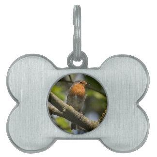 Robin Pet ID Tag