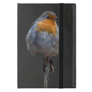 Robin photography case for iPad mini