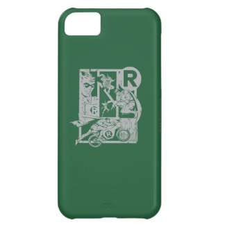 Robin - Picto Grey iPhone 5C Case