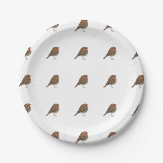 Robin Red Breast Bird Watercolor Painting Artwork Paper Plate