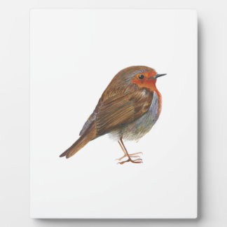 Robin Red Breast Bird Watercolor Painting Artwork Plaque